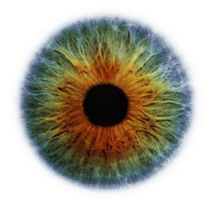 Eye Scapes - 01.jpg